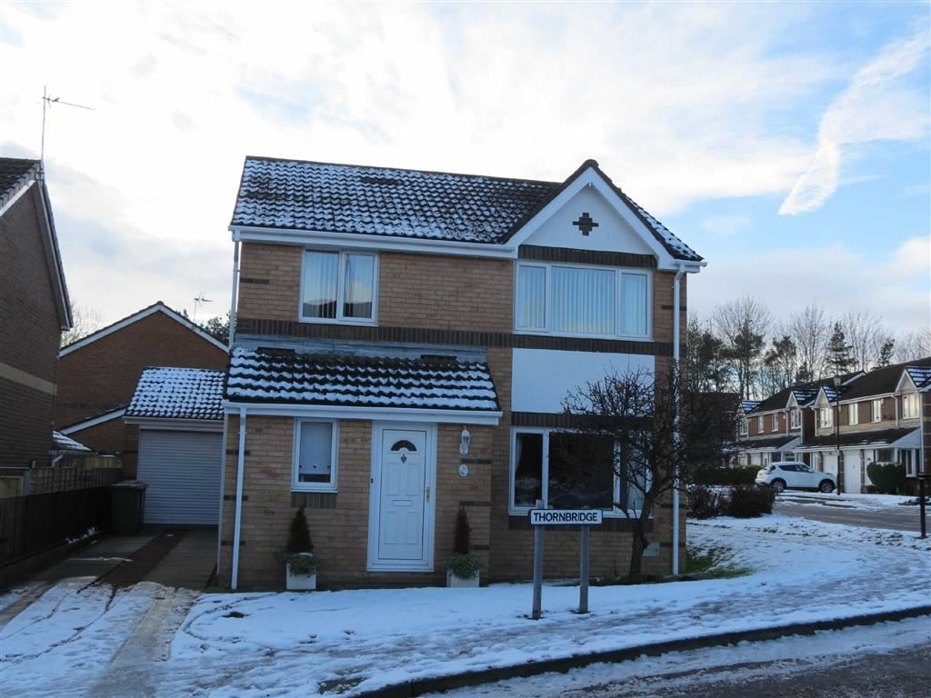 3 Bedrooms Detached House for sale in Thornbridge, Teal Farm, Washington