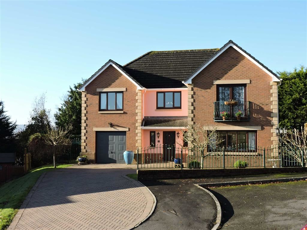4 Bedrooms Detached House for sale in Dol Yr Onnen, Monument Hill, Carmarthen