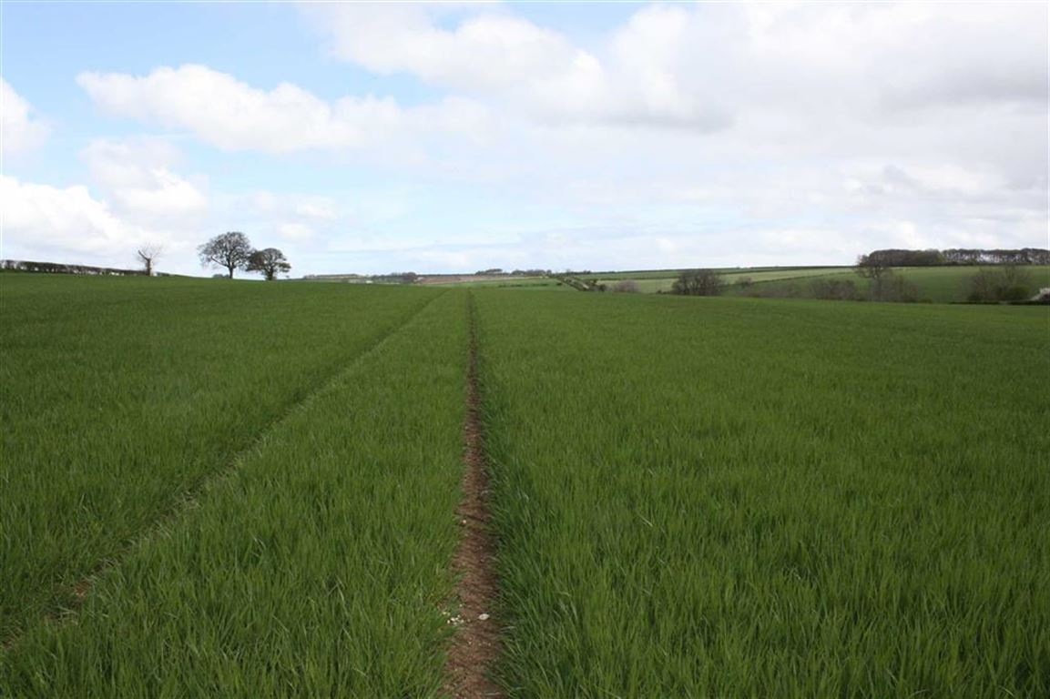 Land Commercial for sale in Kilham, Driffield, East Yorkshire