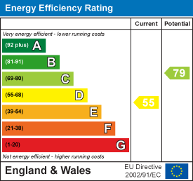 55 of 79 Energy Efficiency Score