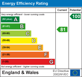 81 of 100 Energy Efficiency Score