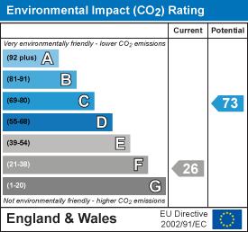 Environmental impact chart